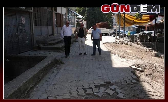 Bozkurt, parke çalışmalarını inceledi