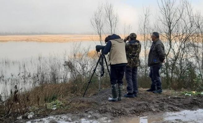 Efteni Gölünün misafirleri tespit ediliyor