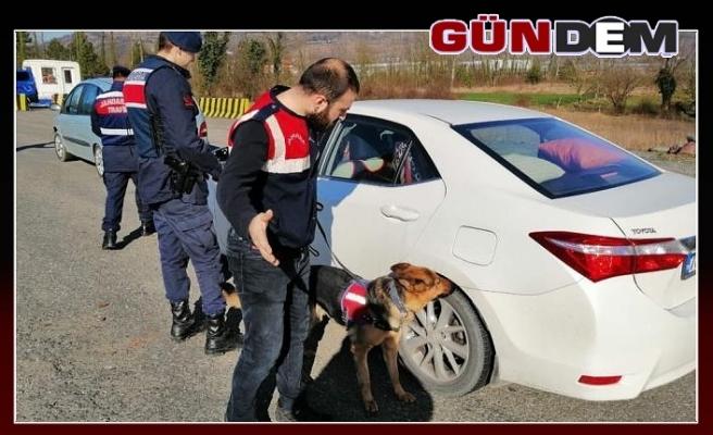 Jandarmadan narkotik uygulaması!..