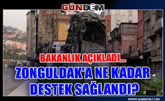 Bakanlık Açıkladı... Zonguldak'a ne kadar destek sağlandı?