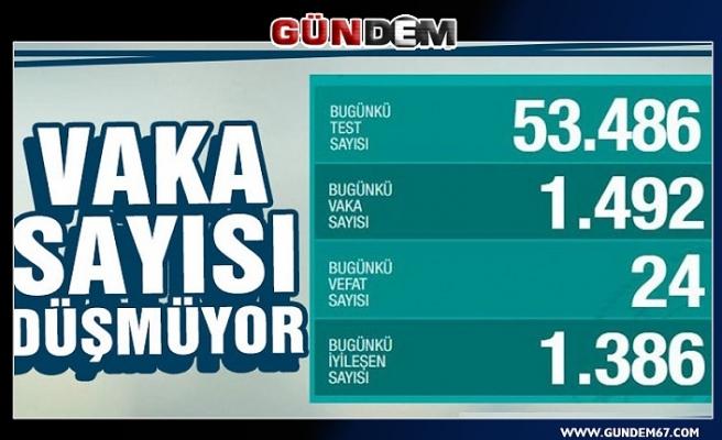 Türkiye'de koronavirüs nedeniyle 24 kişi hayatını kaybetti, 1492 yeni vaka tespit edildi