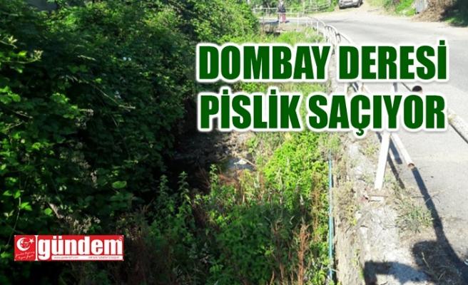 DOMBAY DERESİ İLGİ BEKLİYOR !