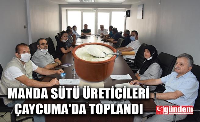 MANDA SÜTÜ ÜRETİCİLERİ ÇAYCUMA'DA TOPLANDI