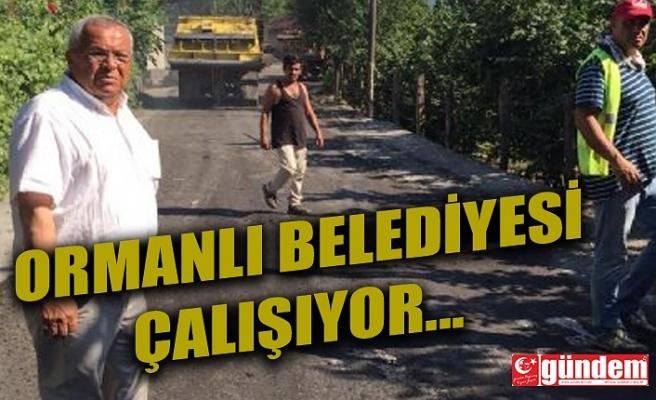 ORMANLI BELEDİYESİ ASFALT ÇALIŞMALARINA BAŞLADI