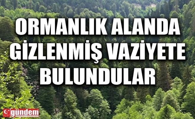 ORMANLIK ALANDA GİZLENMİŞ VAZİYETTE BULUNDULAR