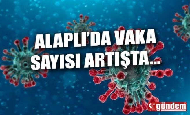 ALAPLI'DA 19 GÜNDE 58 POZİTİF VAKA...
