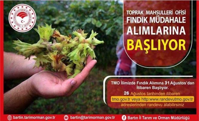 BARTIN TMO, YARIN FINDIK ALIMINA BAŞLIYOR