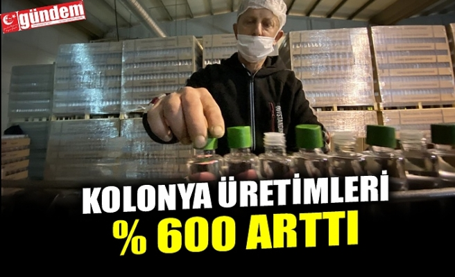 KOLONYA ÜRETİMLERİ %600 ARTTI