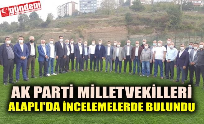 AK PARTİ MİLLETVEKİLLERİ ALAPLI'DA İNCELEMELERDE BULUNDU