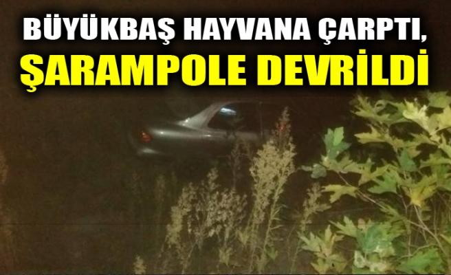 BÜYÜKBAŞ HAYVANA ÇARPTI, ŞARAMPOLE DEVRİLDİ
