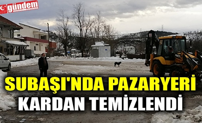SUBAŞI'NDA PAZARYERİ KARDAN TEMİZLENDİ
