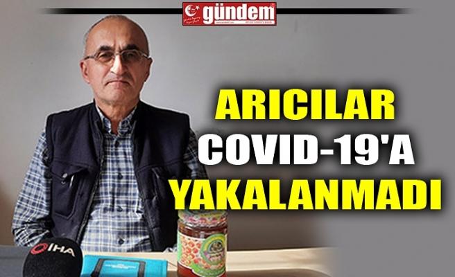 ARICILAR COVID-19'A YAKALANMADI