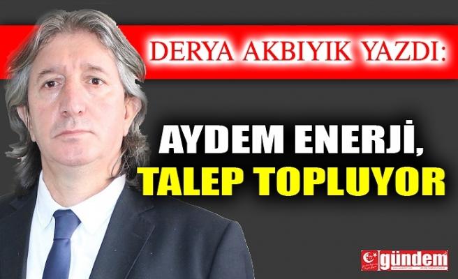 Aydem Enerji, Talep Topluyor