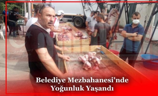 Belediye Mezbahanesi'nde Yoğunluk Yaşandı