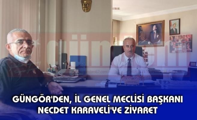 GÜNGÖR'DEN, İL GENEL MECLİSİ BAŞKANI NECDET KARAVELİ'YE ZİYARET