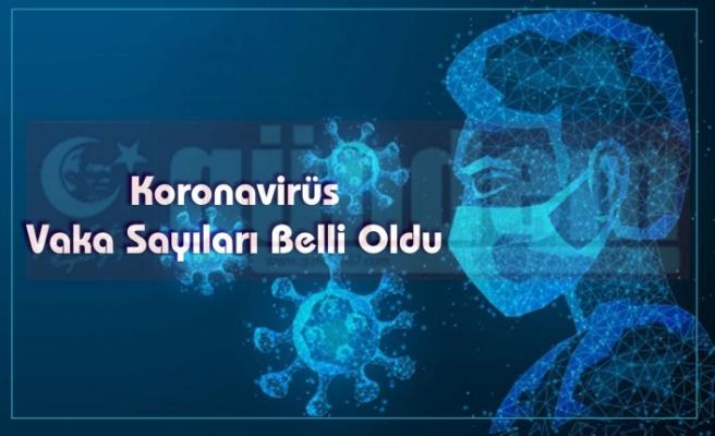 Koronavirüs Vaka Sayıları Belli Oldu