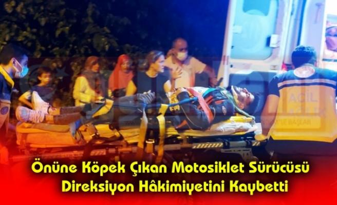 Önüne Köpek Çıkan Motosiklet Sürücüsü  Direksiyon Hâkimiyetini Kaybetti