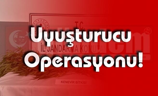 Uyuşturucu Operasyonu Düzenlendi