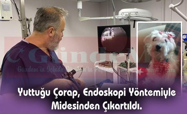 Zonguldak'ta İlk Kez Uygulanan Sistemle Sağlığına Kavuştu