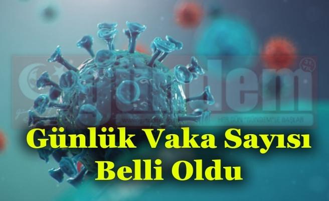 Zonguldak'ta bir gün içinde toplam  20 vaka görüldüğü kaydedildi.