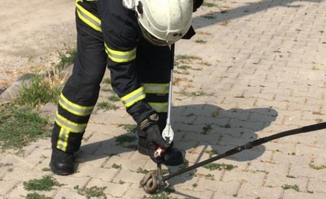Parktaki 1.5 metrelik yılanı itfaiye ekipleri yakaladı