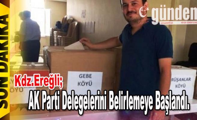 AK Parti Ereğli'de delegelerini belirlemeye başlandı