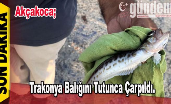 Trakonya balığını tutunca çarpıldı.
