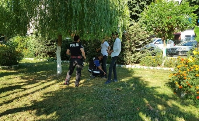 Güvenli parklar için polis görevi başında