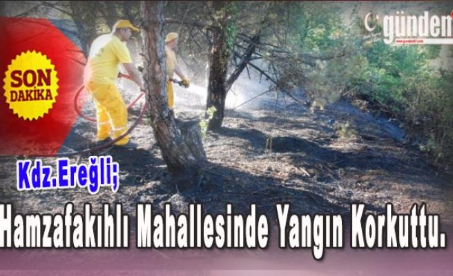 Hamzafakıhlı Mahallesinde Yangın Korkuttu