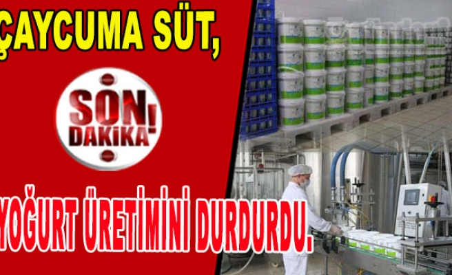 Çaycuma Süt, Yoğurt Üretimini Durdurdu