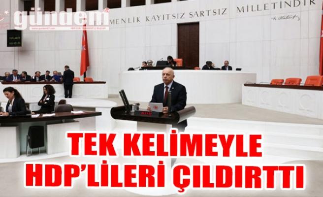 Tek kelimeyle HDP'lileri çıldırttı...