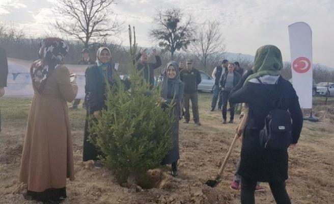 KYK'da kalan öğrenciler fidanları toprakla buluşturdu...