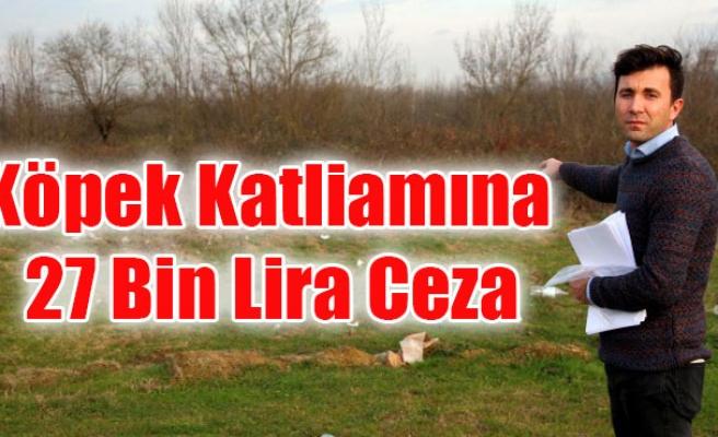 Köpek Katliamına 27 Bin Lira Ceza