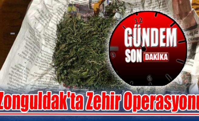 Zonguldak'ta Zehir Operasyonu