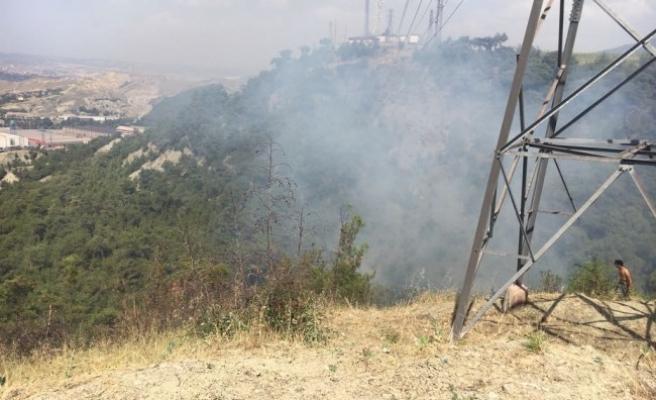 Safranbolu'da buğday tarlasında çıkan yangın