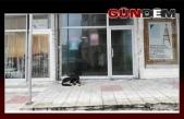 YSK kararları Ereğli'de uygulanmıyor!