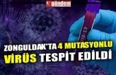 ZONGULDAK'TA 4 MUTASYONLU VİRÜS TESPİT EDİLDİ