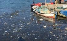 Alaplı balıkcı barınağı kirlendi...