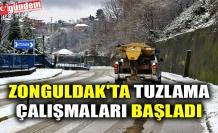 ZONGULDAK'TA TUZLAMA ÇALIŞMALARI BAŞLADI