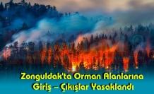 Zonguldak'ta Orman Alanlarına Giriş – Çıkışlar Yasaklandı