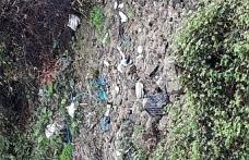 Gümeli Ormanı çöp deposu oldu