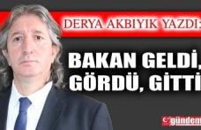 BAKAN GELDİ, GÖRDÜ, GİTTİ