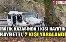 TRAFİK KAZASINDA 1 KİŞİ HAYATINI KAYBETTİ, 2 KİŞİ YARALANDI