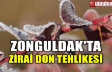 ZONGULDAK'TA ZİRAİ DON TEHLİKESİ