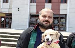 Barodan hayvan hakları ihlaline tepki