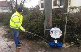 Sokak hayvanlarının mamalıkları temizlendi