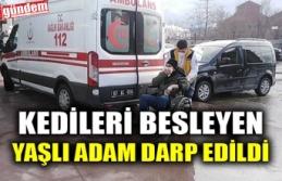 KEDİLERİ BESLEYEN YAŞLI ADAM DARP EDİLDİ