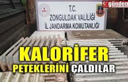 KALORİFER PETEKLERİNİ ÇALDILAR
