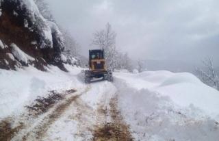 Gümeli'de karla mücadeleye devam