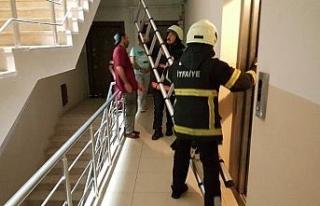 Asansör boşluğuna düşen kediyi itfaiye kurtardı
